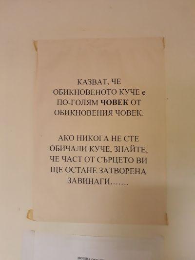1 - ДГ Незабравка - Пловдив