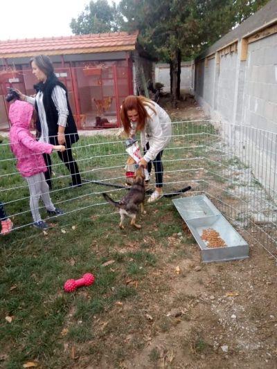 7 - ДГ Незабравка - Пловдив